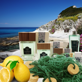 LE SPRIZZE Aquatic citrusy home fragrances
