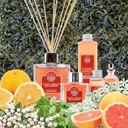 GREEN TEA & GRAPEFRUIT Home Fragrances